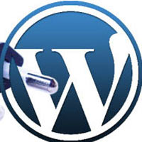 plugin-wordpress3